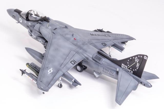 Hasegawa AV8b+-65